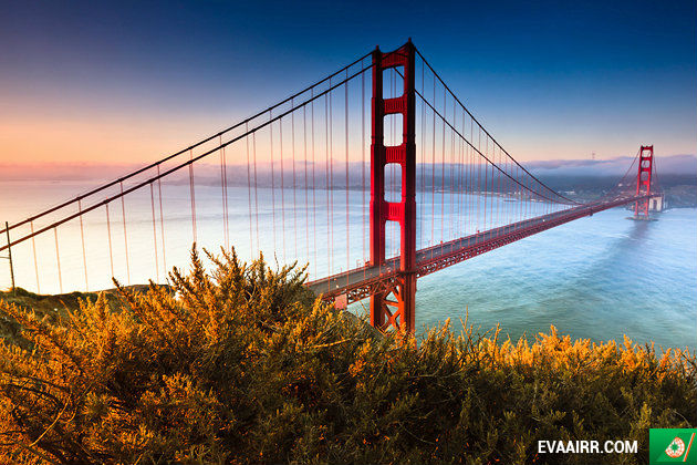 ve may bay di san francisco gia re