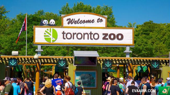 Những vườn thú trên thế giới chiếm nhiều thiện cảm của du khách