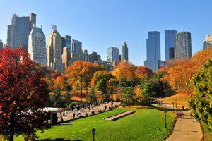 Những không gian xanh đầy ấn tượng ở New York