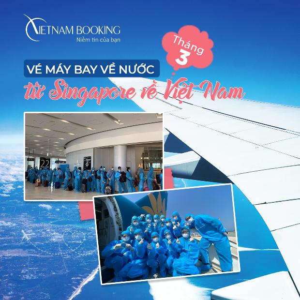 Lịch trình các chuyến từ Singapore về Việt Nam mới nhất